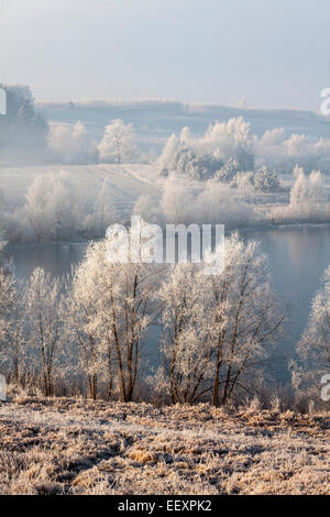 Lago ghiacciato, la Masuria - Europa, Polonia Foto Stock