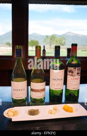 Il vino e il formaggio associazione presso Emiliana Cantina organico nella Valle di Casablanca, Cile, Sud America Foto Stock