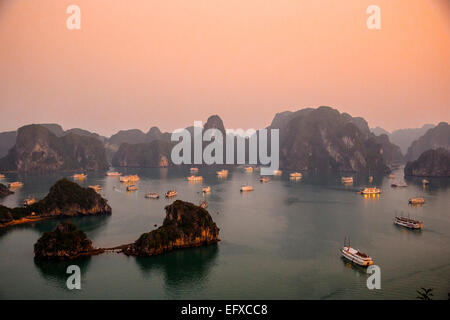 Halong Bay, Vietnam Foto Stock