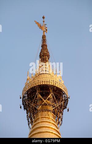 La parte superiore della Shwedagon pagoda Yangon, Myanmar ( Birmania ), Asia Foto Stock