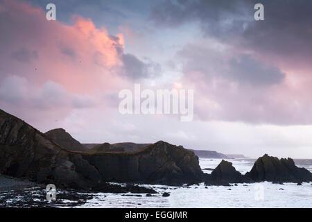 Scogliere e costa rocciosa al tramonto, 'Hartland Quay', Devon, Inghilterra, Regno Unito Foto Stock