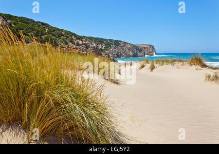 L'Italia, Sardegna, bay, paesaggi costieri, Cala Domestica Foto Stock