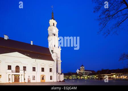 Europa, Stati baltici Lituania, Kaunas, Municipio di Kaunas