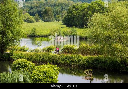 Percorsi in bicicletta lungo la 'Ruhrtalradweg' valle della Ruhr bike, percorso dal fiume la molla nel 'Sauerland' Foto Stock