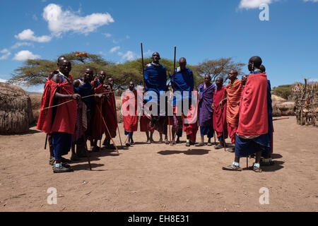 Un gruppo di uomini Maasai prendendo parte al tradizionale danza Adumu comunemente noto come il Jumping danza eseguita Foto Stock