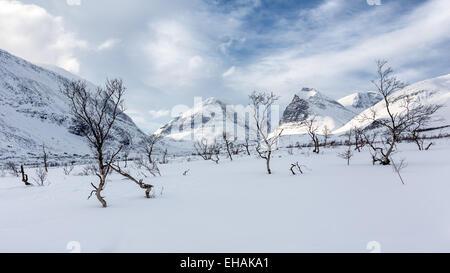 Viste sulla montagna di Kebnekaise area di montagna, Kiruna, Svezia, Europa UE Foto Stock