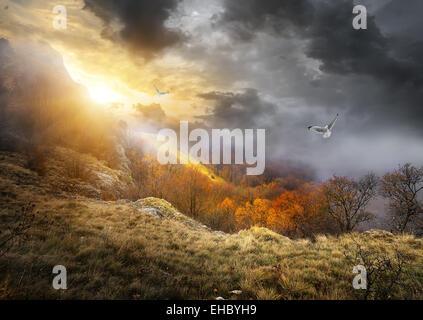 Uccelli e nuvole grigie su montagne in autunno Foto Stock