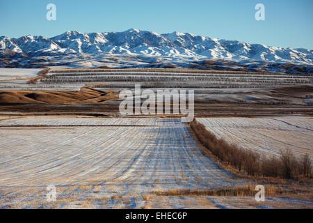 Prima neve sui campi Foto Stock