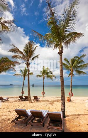 Vacante sedie a sdraio sotto le palme su una spiaggia di sabbia a Vinpearl Resort. Phu Quoc island, Kien Giang Provincia, Foto Stock