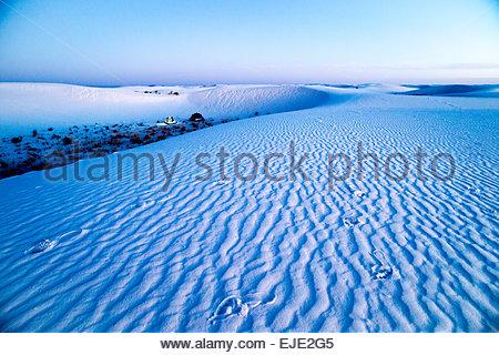 Campeggio in bianche dune di sabbia del Parco Nazionale. Foto Stock