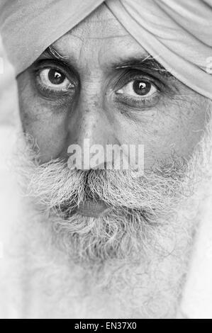 Uomo Sikh, ritratto, Amritsar Punjab, Nord India, India Foto Stock