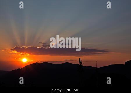 WA10600-00...WASHINGTON - Sun arrivando fino al mattino presto sulla cresta di Curtis in Mount Rainier National Foto Stock