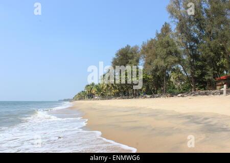 Surf rompe su Cherai Beach. Foto Stock