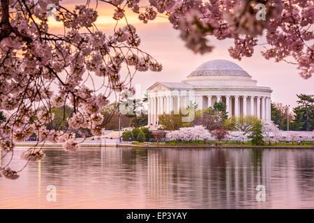 Washington, DC con il bacino di marea e Jefferson Memorial durante la primavera. Foto Stock