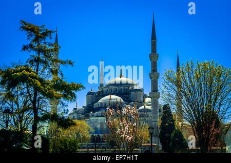 La Moschea Blu (Sultanahmet Camii), Istanbul, Turchia. Foto Stock