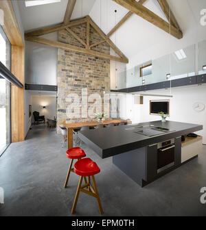 Moderno, nero cucina aperto e spazioso salone con caminetto Foto & Immagine Stock: 187355665 - Alamy