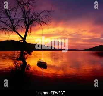 Paesaggio al tramonto. Tre e barca a vela nel tramonto al mare.