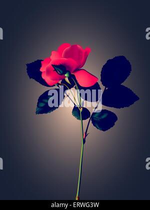 Red Rose su sfondo color pastello. Colori vintage, in stile retrò. Immagine vettoriale EPS 8, mesh Foto Stock