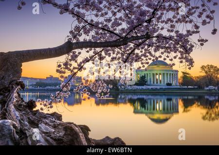 Washington, DC al Jefferson Memorial durante la primavera. Foto Stock
