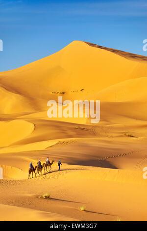 I turisti di marcia sui cammelli, Erg Chebbi deserto vicino a Merzouga, Sahara, Marocco