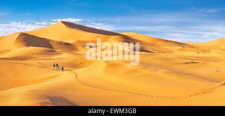 I turisti di marcia sui cammelli, Erg Chebbi deserto vicino a Merzouga, Sahara, Marocco Foto Stock