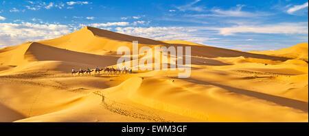 Camel caravan, Erg Chebbi deserto vicino a Merzouga, Sahara, Marocco