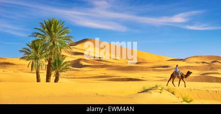 Berber uomo giro sul cammello, Erg Chebbi deserto vicino a Merzouga, Sahara, Marocco