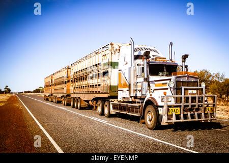 Un iconico 3 rimorchio stradale australiana treno viaggia lungo l'Abbondanza Hwy vicino a Gemtree nel Territorio Foto Stock