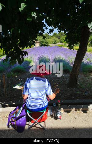 Un artista dipinge la lavanda in giardino alla Maison de Sante San Paolo Monastero di San Remo Foto Stock