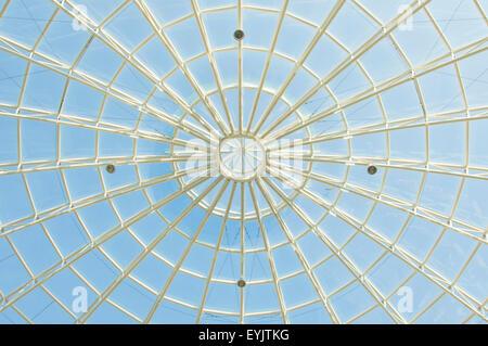 Spider Web Architecture Foto Stock
