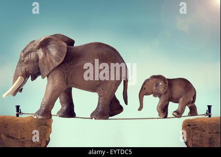 Il bambino e la madre di famiglia di elefante in equilibrio su una fune o highwire Foto Stock
