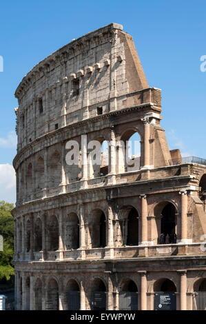 Colosseo, antico Foro Romano, Sito Patrimonio Mondiale dell'UNESCO, Roma, Lazio, l'Italia, Europa Foto Stock