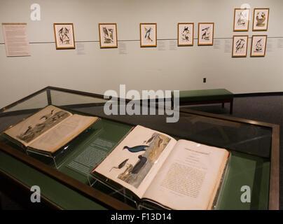 Il museo di stato della Pennsylvania PA Harrisburg