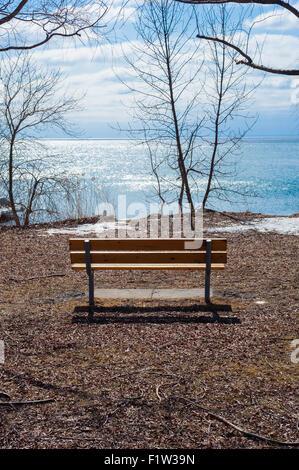 Semplice marrone vuoto panca di legno che si affaccia sul lago, circondato da alberi di nudo e rami, con poco nuvoloso Foto Stock