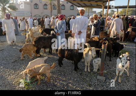 Il sultanato di Oman, gouvernorate di Ad-Dakhiliyah, Nizwa, il venerdì il mercato del bestiame Foto Stock