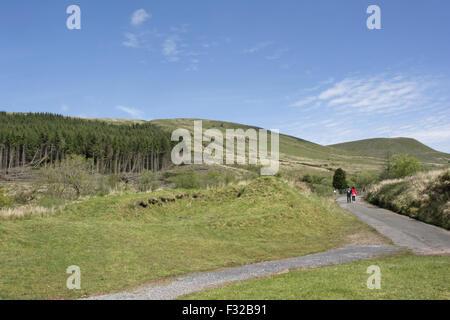 Turista giovane camminando lungo la strada nei pressi di piantagione di conifere in upland habitat, Pontsticill, Foto Stock