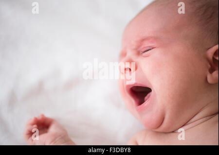 Baby girl (2-5 mesi) che grida nel presepe Foto Stock