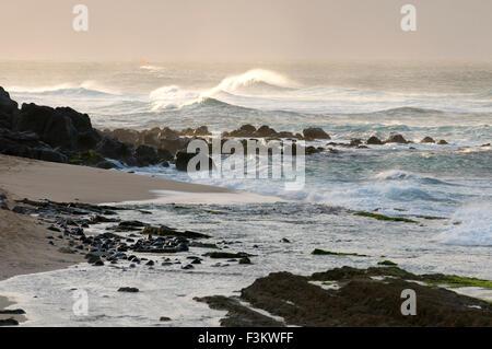 Wawes in Ho'okipa Beach. Maui. Hawaii. Ho'okipa Beach Park è uno dei migliori punti per ocean sport e ricreazione Foto Stock