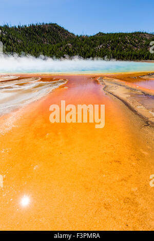 Grand Prismatic Spring; Midway Geyser Basin, il Parco Nazionale di Yellowstone, Wyoming USA Foto Stock