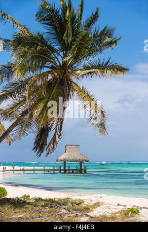 Il molo di legno con capanna con il tetto di paglia, Playa Blanca, Punta Cana, Repubblica Dominicana, West Indies, dei Caraibi e America centrale