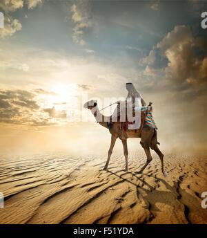 Bedouin passeggiate a dorso di cammello attraverso il deserto sabbioso Foto Stock