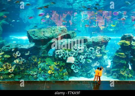 I bambini guardando il mondo sottomarino nel centro commerciale di Dubai Aquarium, Dubai, Emirati Arabi Uniti Foto Stock