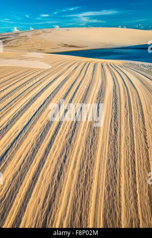 Modelli di dune e laghi di acqua piovana, Lencois Maranhenses National Park, Brasile, Oceano Atlantico acqua piovana Foto Stock