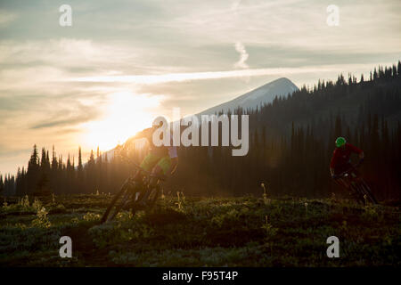 Mountain bike, singletrack, Mount Fostall, montagne Monashee, Sol Mountain Lodge, British Columbia, Canada Foto Stock