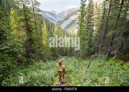 Una giovane donna guarda fuori dalla foresta mentre escursionismo l'Utopia passa il sentiero, Miette Hot Springs, Foto Stock