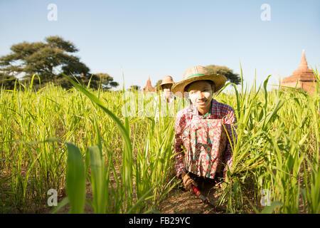 ... cappello di paglia  Ritratto di una giovane donna birmana contadino con  thanaka faccia in polvere raccolta in campo. 4fc7501fa0fa
