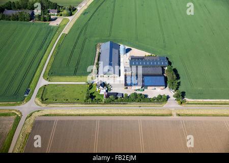 Paesi Bassi, Lelystad, Agriturismo, terreni agricoli, pannelli solari sul rood, antenna Foto Stock