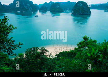 Le isole e la spiaggia nella baia di Halong, Vietnam, sud-est asiatico Foto Stock