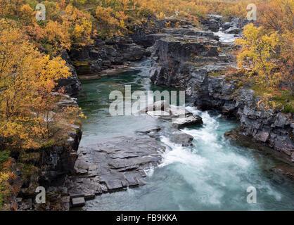Fiume breve e rapido fino a Nord, che scorre veloce l'acqua. Canyon con rocce, scogliere e acqua in movimento. Flusso potente e cascate.