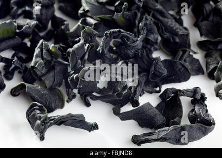 Alga wakame Foto Stock
